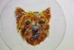 hondje, verven met koud vloeibaar glas, Glasatelier Vetro Colorato.jpg